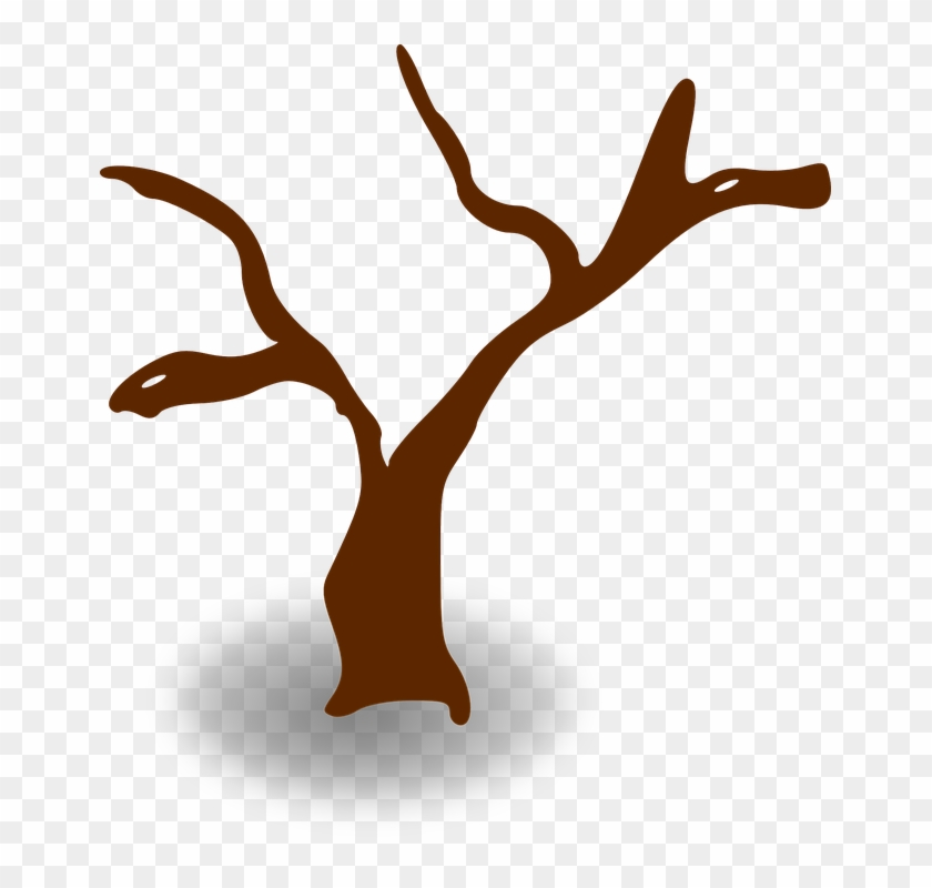Cliparts Stick Tree - Tree Clip Art #27913