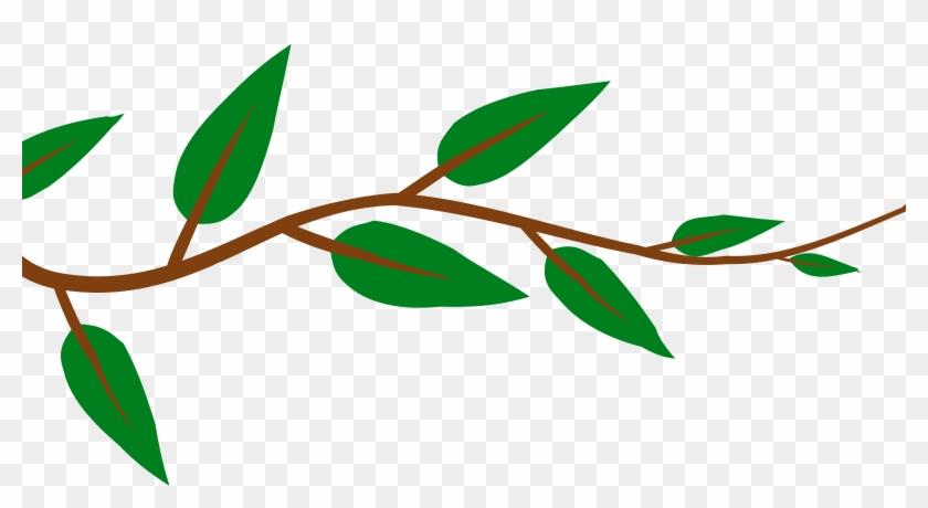 Leaf Plant Clipart, Explore Pictures - Tree Branch Cut Out #27935