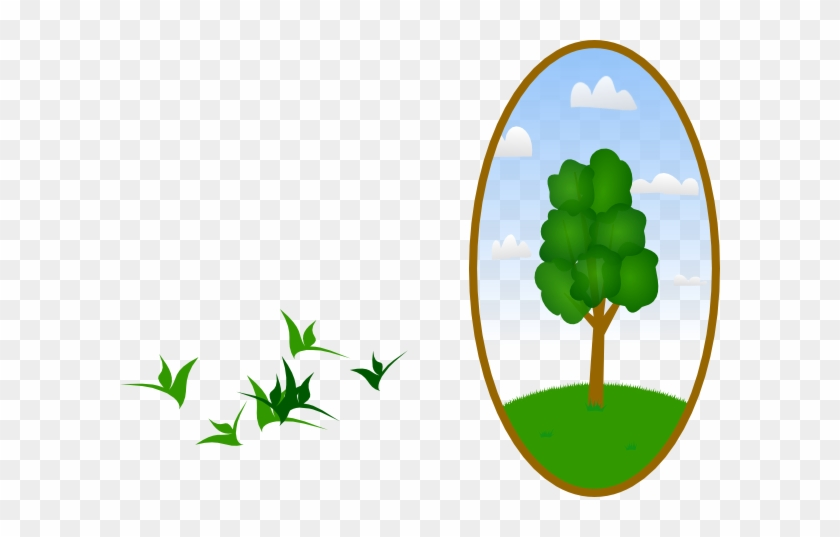 Landscaping Clipart Tree #28145