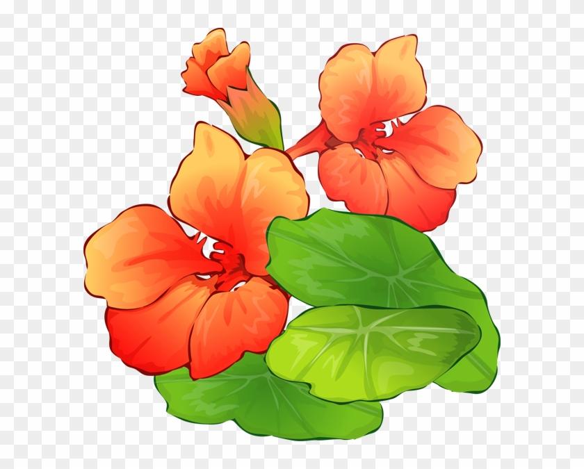 Summer Clip Art - Free Summer Flowers Clipart #28261
