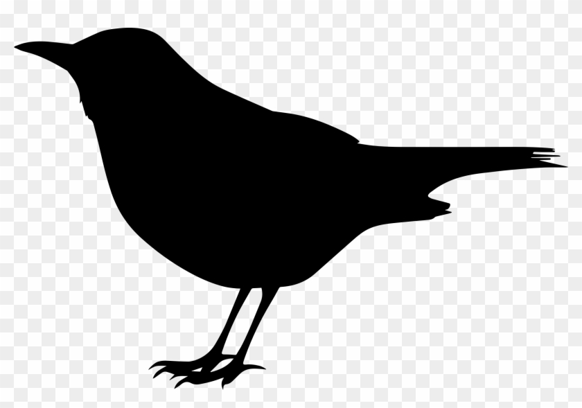 Blackbird Silhouette Clip Art Of A Black - Black Bird Clipart Black And White #28286