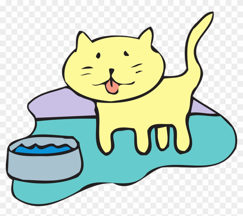 Cat Water Bowl Pet Animal - Cat Water Bowl Clipart #28347