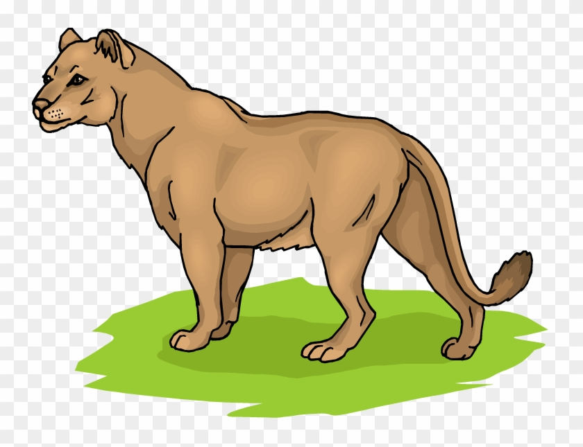 Girl Lion Cliparts - Lioness Clipart #28471