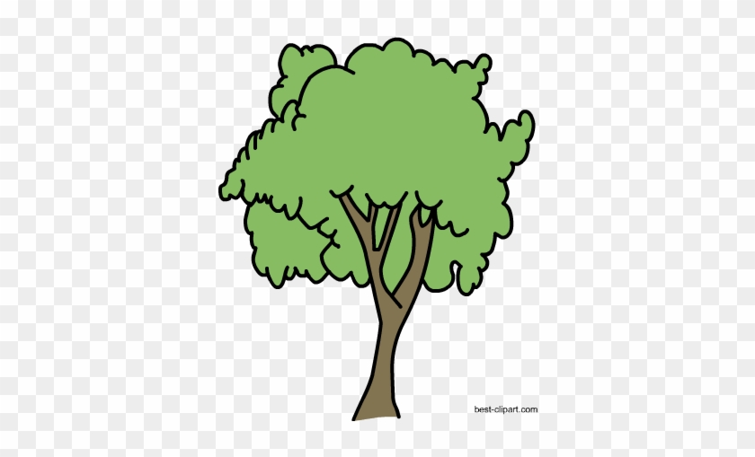 Free Big Tree Png Clipart Image - Portable Network Graphics #28512