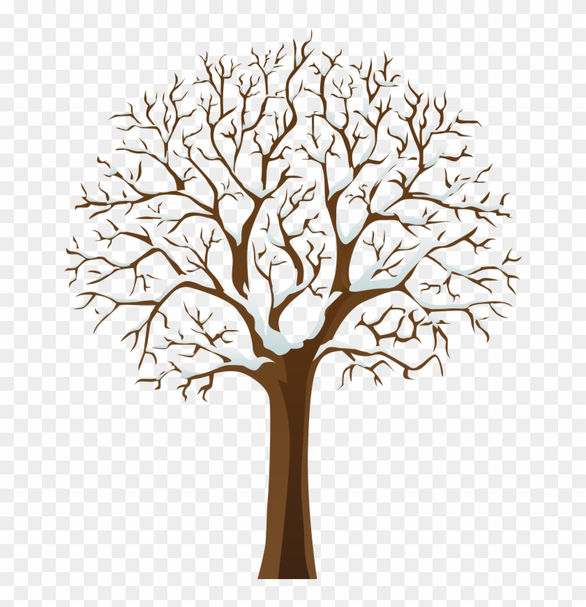 Pin Tree Clipart - Tree With No Leaves #28853