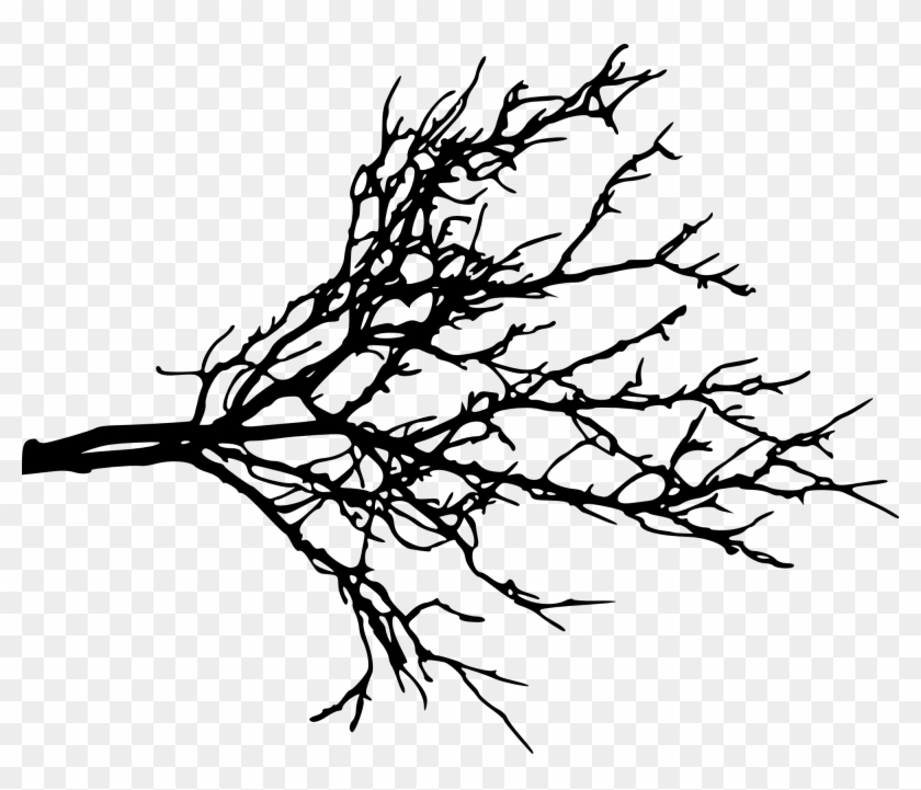 Free Download - Tree Branch Silhouette Png #28909