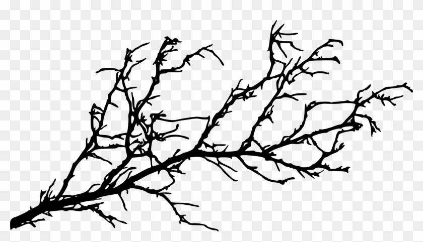 15 Tree Branch Silhouettes - Tree Branch Silhouette Png #28975