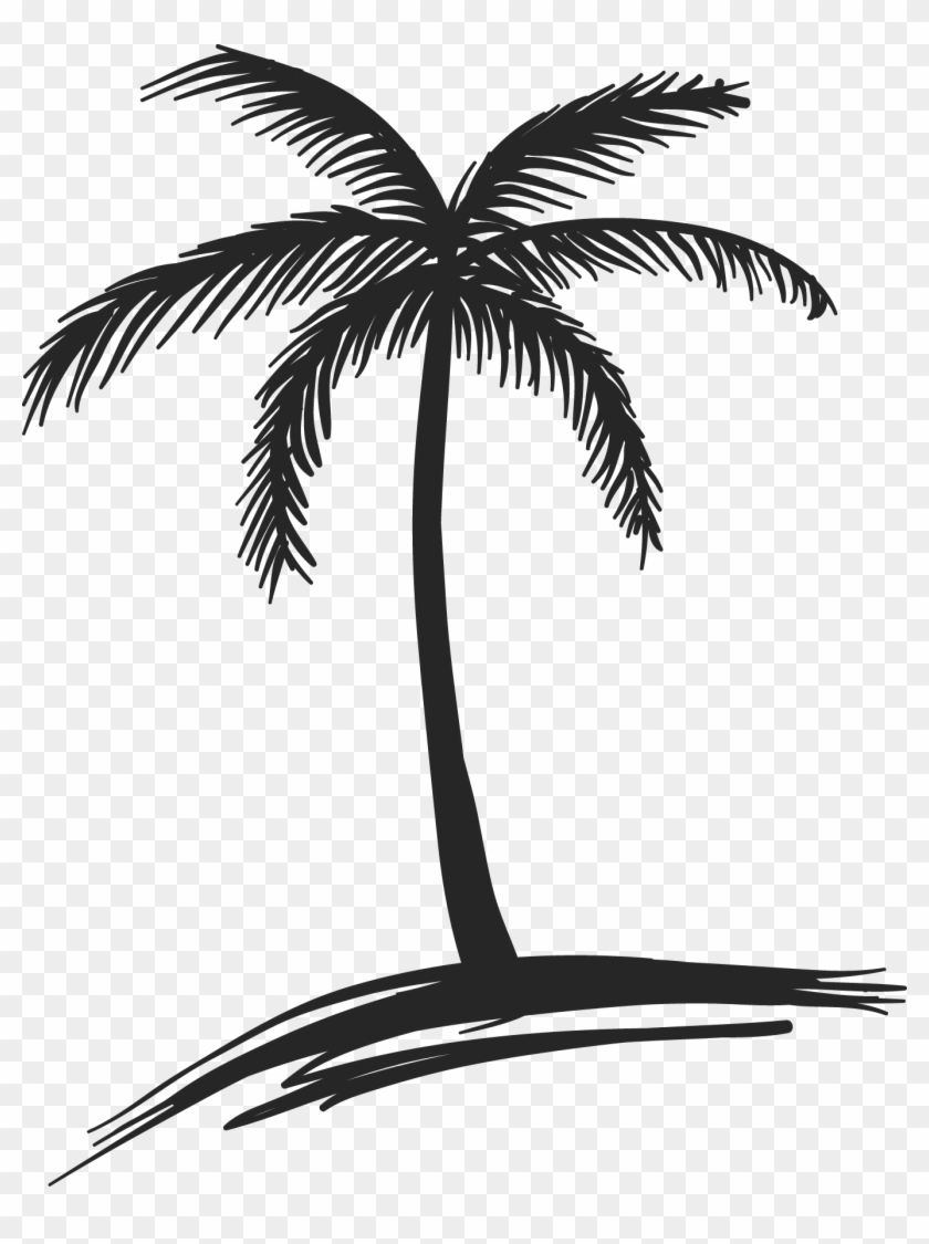 Images For Coconut Palm Tree Drawing - Palm Tree Drawing Png #28987
