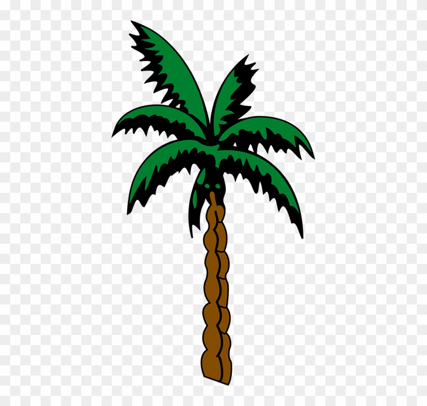 Pin Free Palm Tree Clip Art Images - Suriname Coat Of Arms #29031
