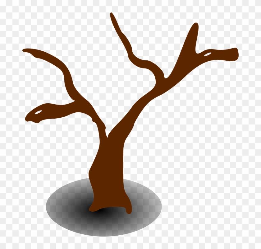 Tree, Dead, Dry, Lifeless, Drought - Tree Clip Art #29041