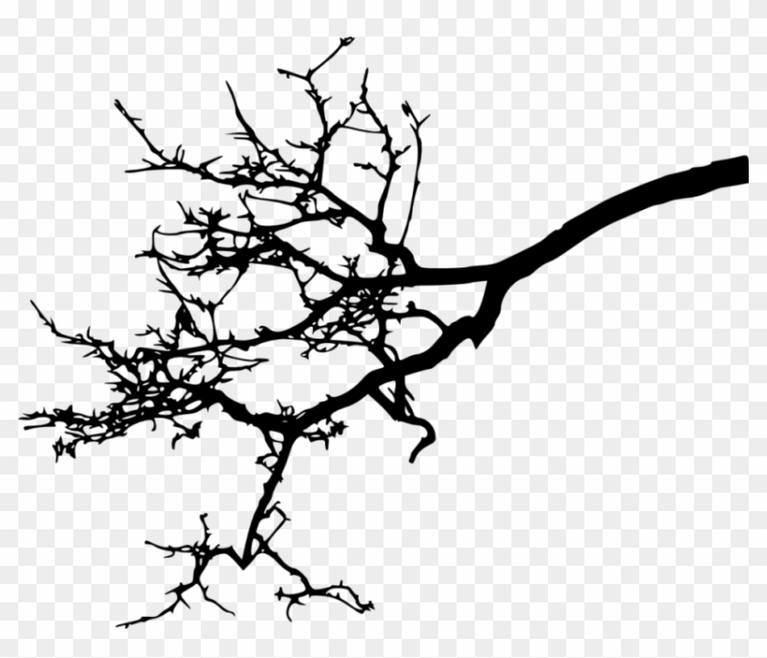 Free Png Tree Branch Silhouette Png Images Transparent - Transparent Bird In Tree Silhouette #29044