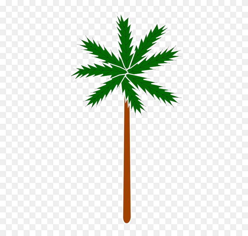 Palm Plant Stylised Tree - Clip Art #29140