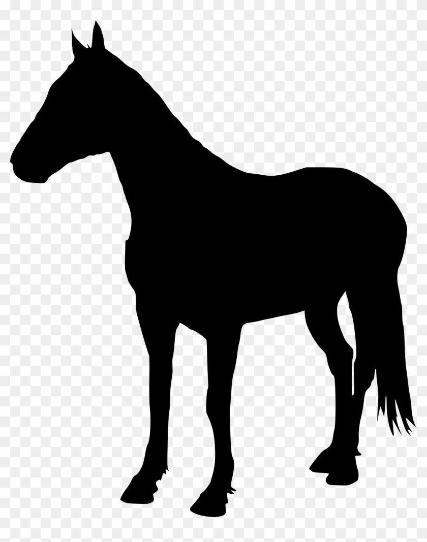 5 Horse Silhouette - Horse Silhouette Transparent Background #29160