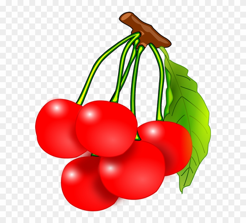 Cherry Clipart Fruite - Cherry Clipart #29421