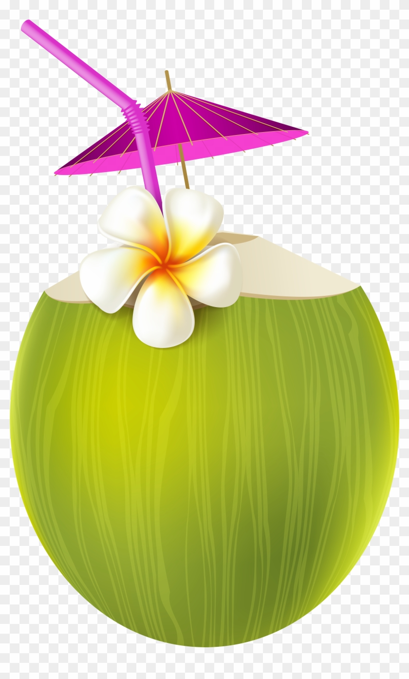 Aloha Party, Luau Party, Summer Parties, Pool Parties, - Summer Drinks Clipart Png #29429