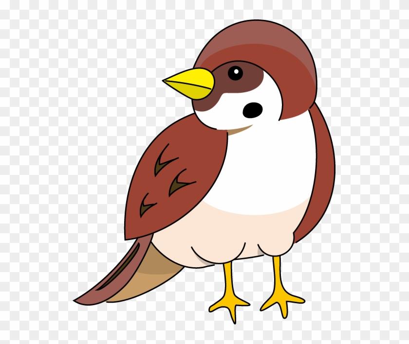 School Kids Fun - Cartoon Pictures Of Sparrow #29850