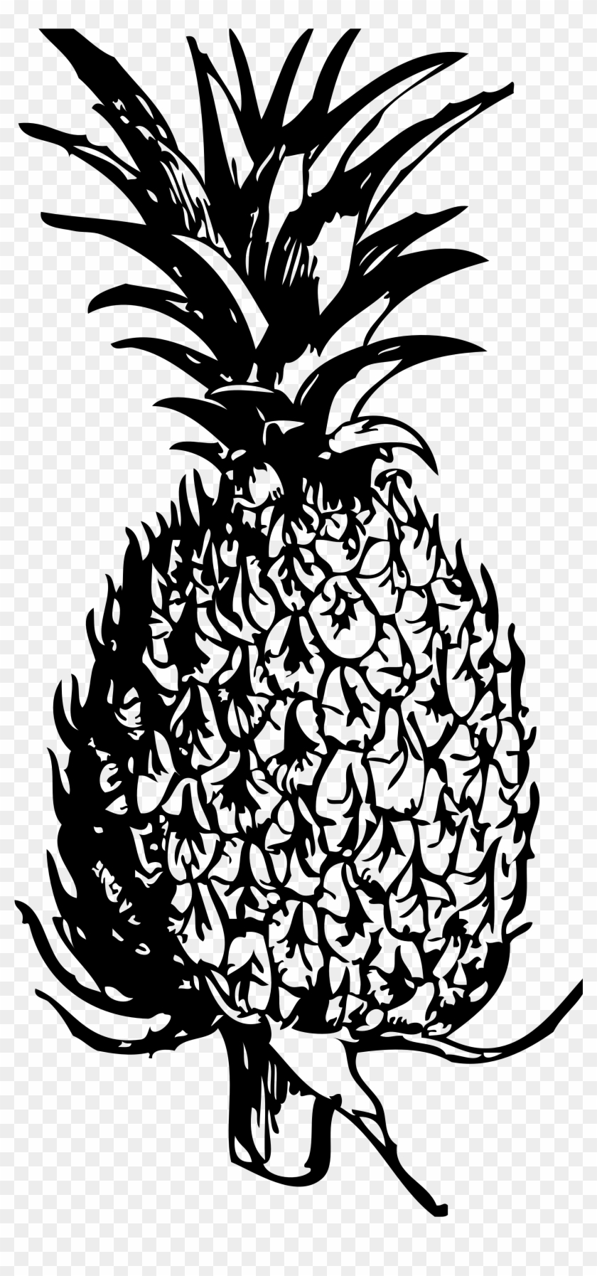 Free Pineapple Black And White Clipart Free Clip Art - Paineapple Clipart Black And White #30144