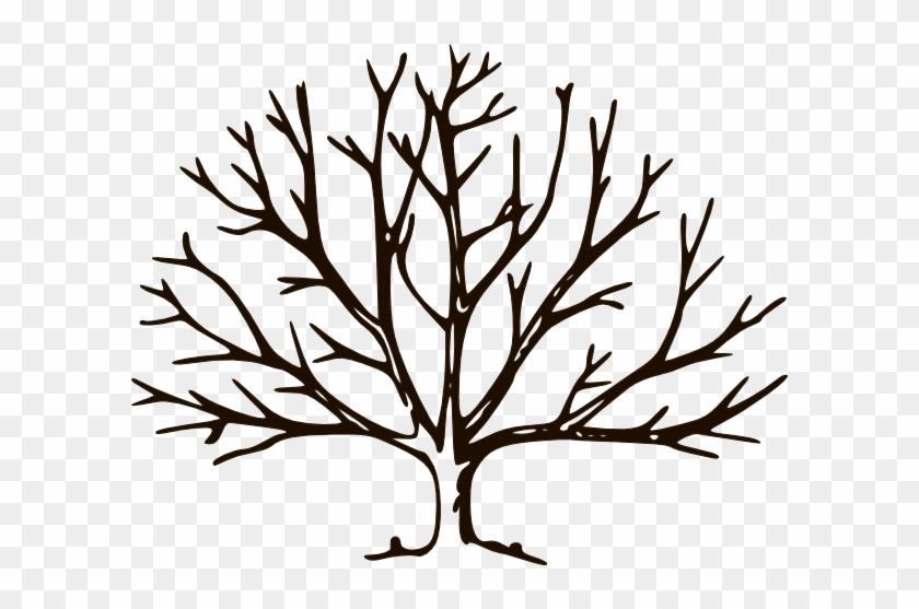 Chocolate Tree Clip Art - Bare Tree Clipart #30206