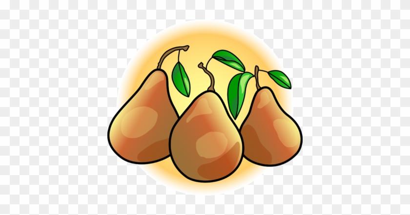Pears - Clip Art Pears #30256