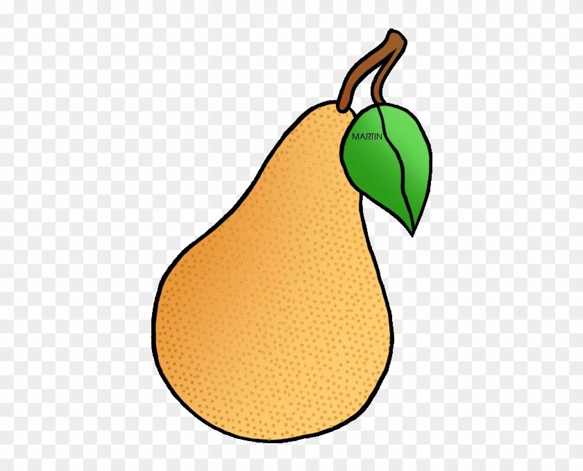 State Fruit Of Oregon - Oregon Pear #30267