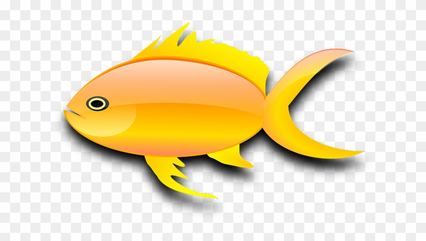 Goldfish Gold Fish Clip Art Black And White Free Clipart - Gold Fish Clip Art #30375