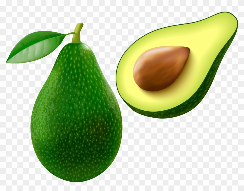 Avocado Clipart - Avocado Clipart #30411