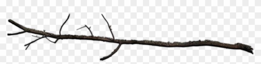 Branch - 471 62 #30426