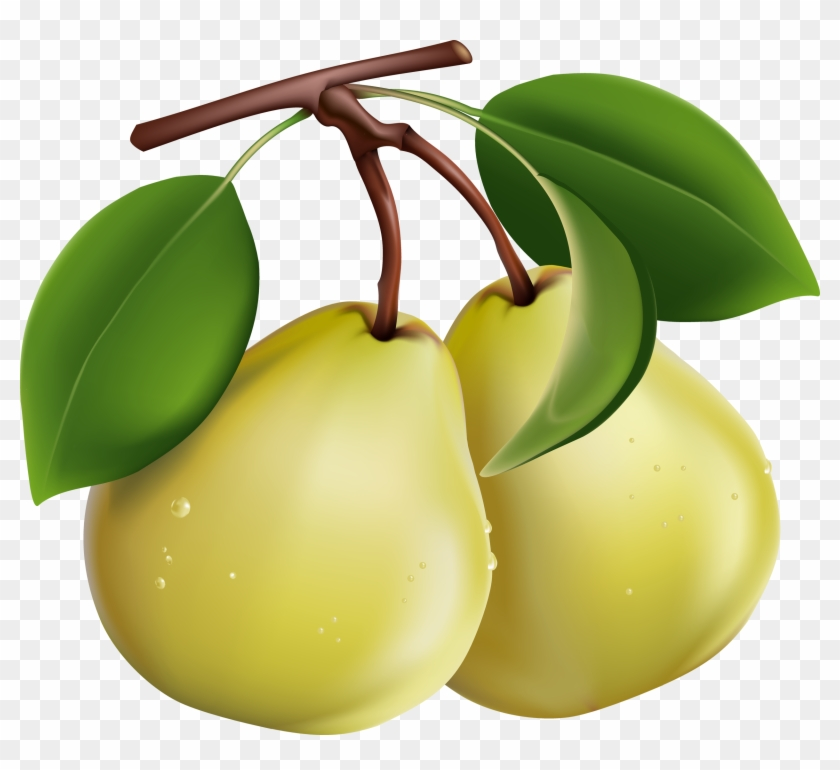 Google Search - Pear Fruit Clip Art #30440