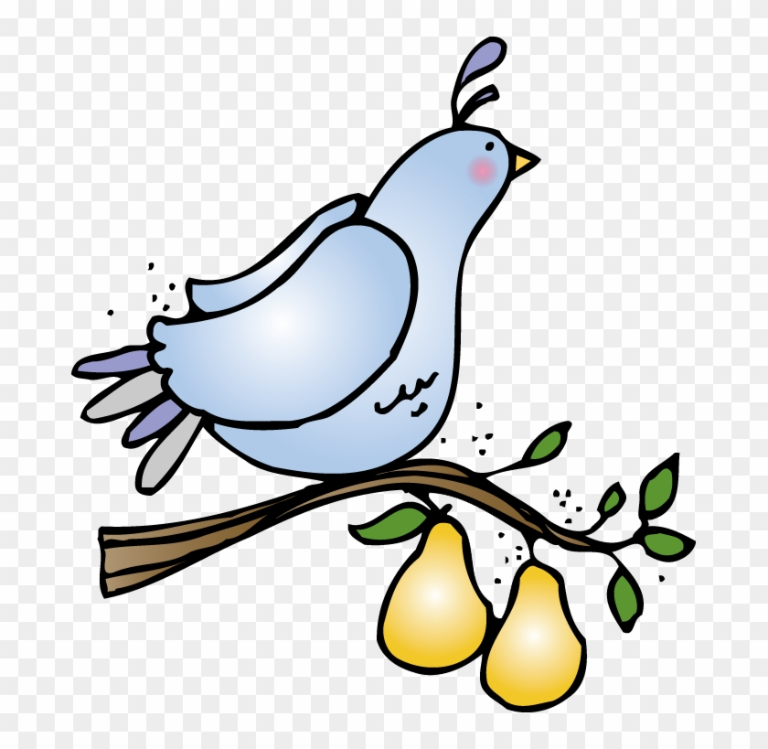 Partridge In A Pear Tree Clip Art - Partridge In A Pear Tree Clipart #30451