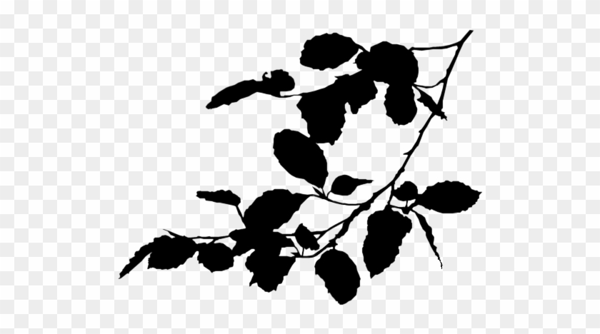 Stock Branch Silhouette By Jassysart-stocks - Tree Branch Silhouette Png #30475