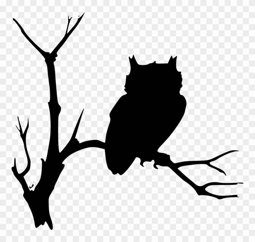 Owl Silhouettes Black Tree Branches Sitting Bird - Ad Maiorem Dei Gloriam #30912