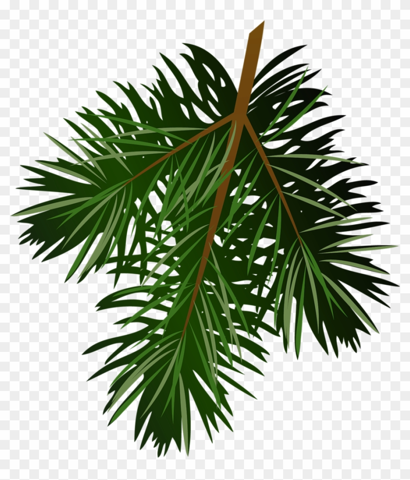 Transparent Pine Branch Clip Art Christmas - Pine Branch Png #30944