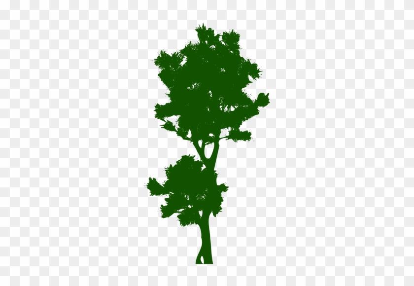 1253 Free Clipart Bare Tree Branches Public Domain - Tree #30969