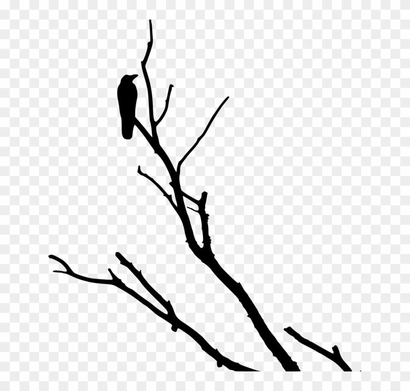 Crow Raven Silhouette Tree - Dead Tree Branch Clip Art #31081