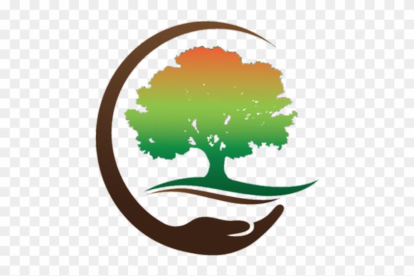 Davis Tree & Yard Care - Logo For Tree Planting #31206