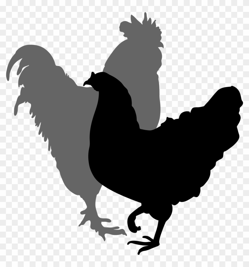 Filerooster And Hen Silhouette - Rooster And Hen Silhouette #31234