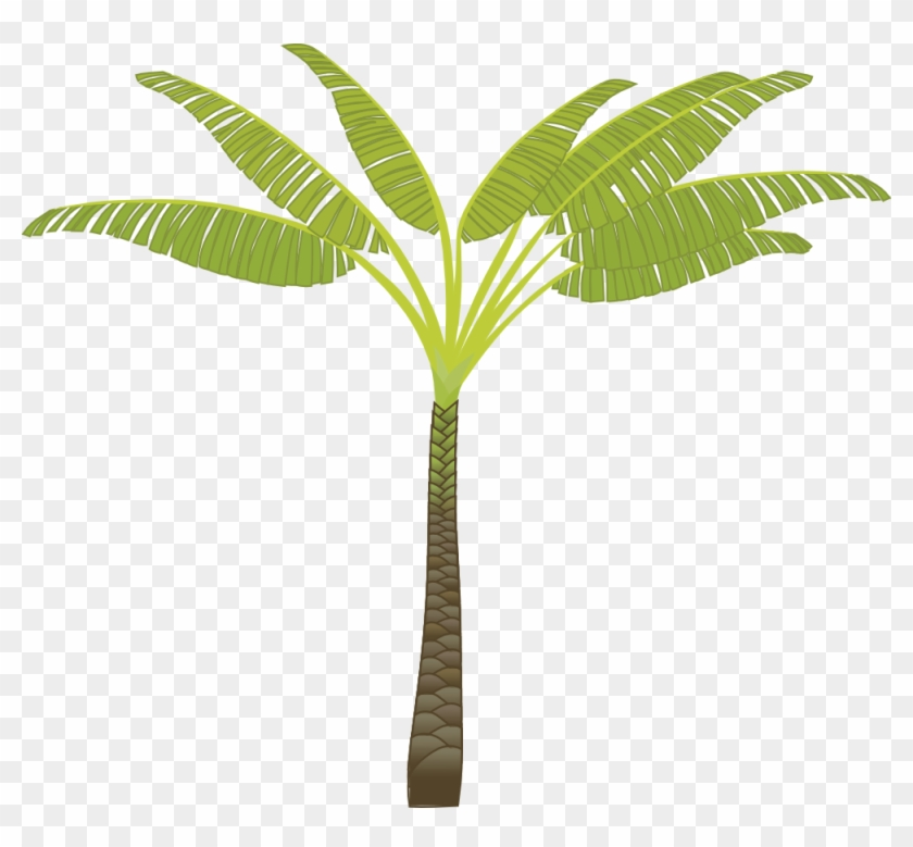 Palm Tree Png Images, Download Free Pictures - T Shaped Palm Tree #31265