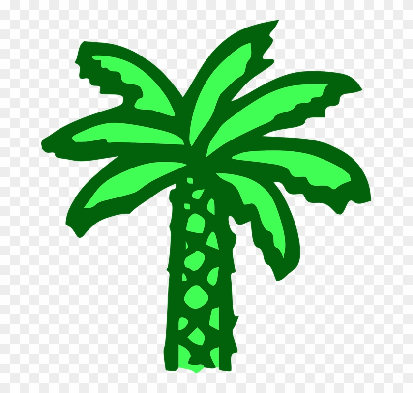 Palm Tree, Green, Beach, Banana Tree - Cartoon Palm Tree #31309