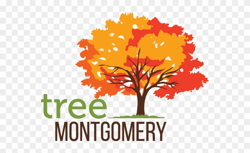 Tree Montgomery Logo - Autumn Tree Logo #31592