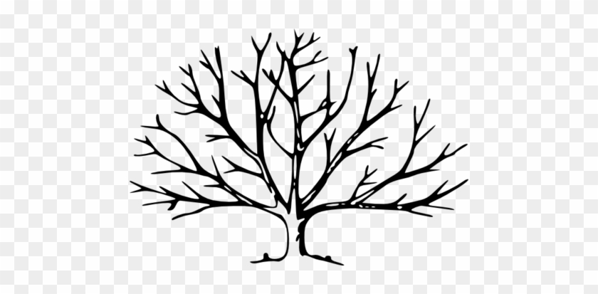 Coloring Trend Medium Size Cutting Down Trees Tree - Tree With No Leaves #31698