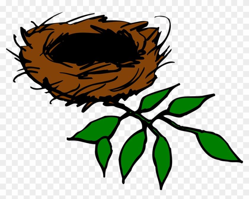 Bird Nest Nest Aerie Birds Leaves Branch Limb - Nest In Tree Clipart #31789