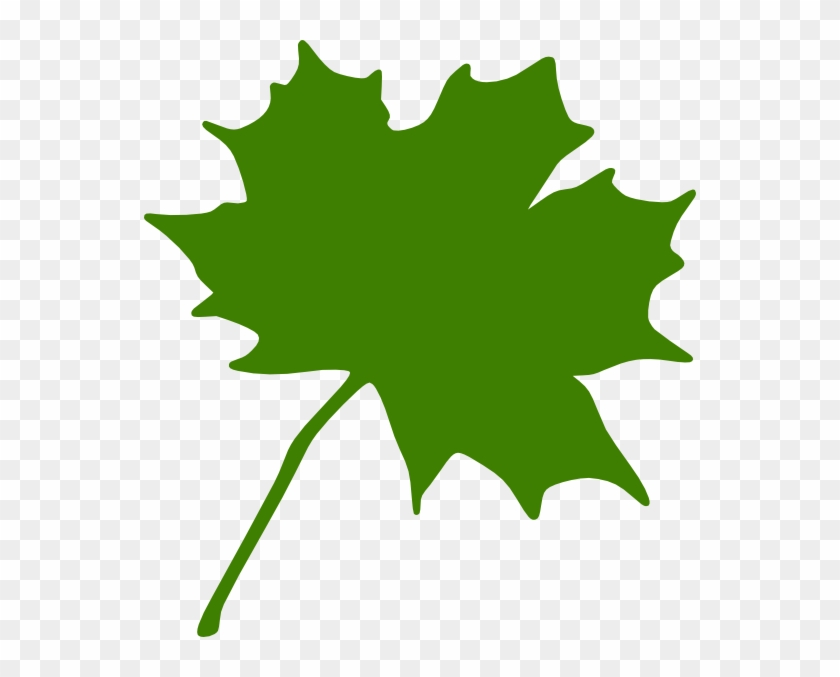Green - Maple - Leaf - Clipart - Maple Leaf Clip Art #31840