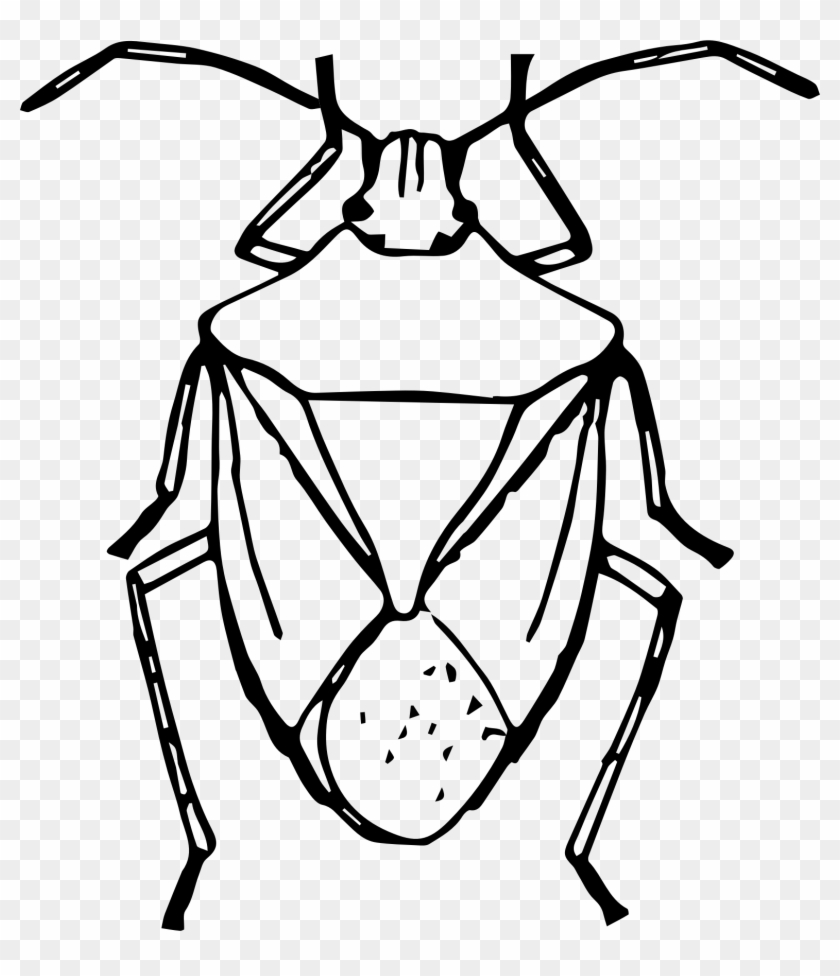 Bugs Clipart Big Black Pencil And In Color Bugs Clipart - Stinkbug Black And White #31866