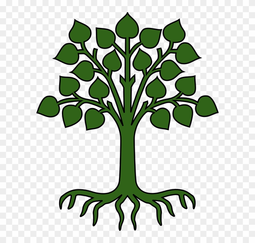 Tree Leaves Roots Green Pictogram - Cartoon Tree With Roots #31927
