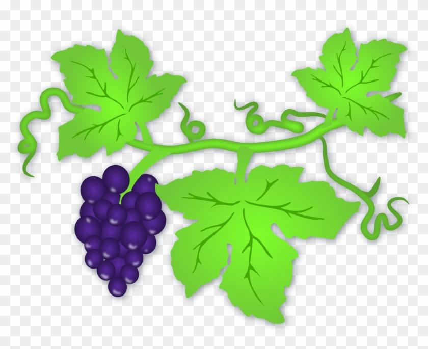 Clip Art Tree Grape - Vine Leaves Clip Art #31961
