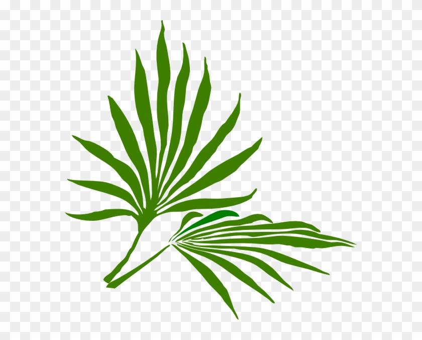 Palm Sunday Clip Art - Palm Frond Clip Art #32165