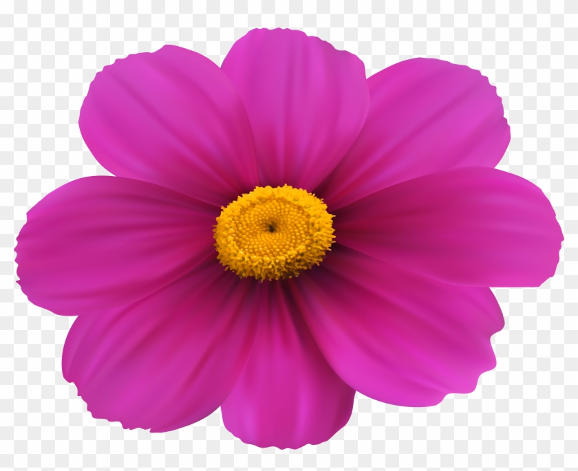 Flower Magenta Purple Violet Clip Art - Flower Magenta Purple Violet Clip Art #33373