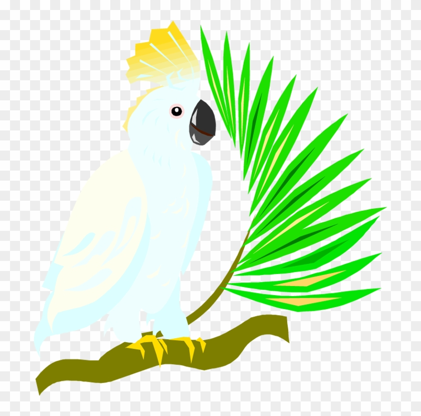 Free Parrot And Macaw Clipart - Cockatoo Clipart Transparent Background #32232
