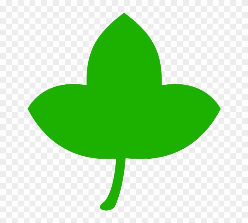 Icon Leaf Green Tree Nature Leaves Plant - Leaf #32644