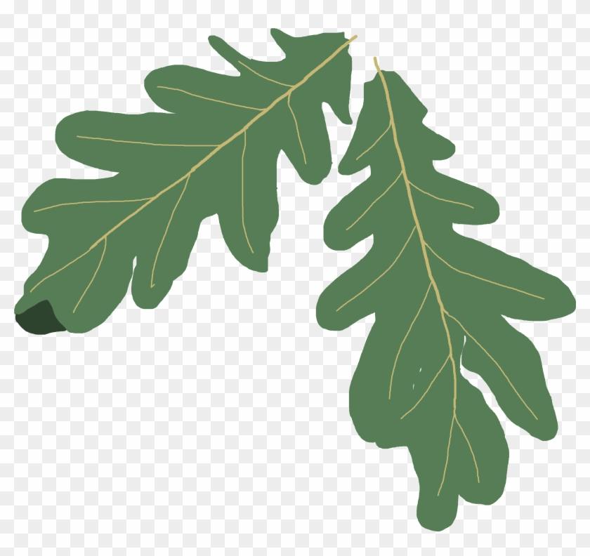 Leaves Clipart Oak Leaf - Oak Leaf Clip Art #32808